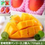 母の日 父の日 高級 宮崎完熟マンゴー 2L2個化粧箱入(糖度15度以上)