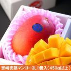 高級 宮崎 完熟マンゴー 3L1個(化粧箱入)糖度15度以上