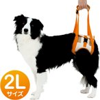 ペティオ 老犬介護用 歩行補助ハーネス 後足用 2L 中・大型犬用 (犬用品)(犬用ハーネス)(胴輪)