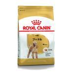 ロイヤルカナン ROYALCANIN ドッグフード BHN プードル 成犬用 10ヶ月以上 1.5kg (ロイヤルカナン ROYAL CANIN/ドライフード/成犬用 アダルト ・プードル専用)