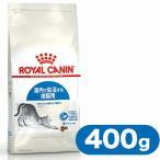 ロイヤルカナン キャットフード インドア 成猫用 室内猫用 400g (キャットフード/ドライフード/成猫用 アダルト/室内猫用/インドア/ROYAL CANIN)