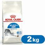 ロイヤルカナン キャットフード インドア 成猫用 室内猫用 2kg  (キャットフード/ドライフード/成猫用 アダルト/室内猫用/インドア/ROYAL CANIN)