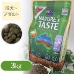 ネイチャーズテイスト NATURE'S TASTE ドッグフード アダルト ラム&ダック 3kg