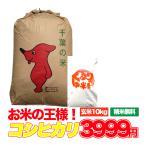 新米入荷 お米 10kg こしひかり 千葉県 玄米 うるち米 精白米 29年産 送料無料