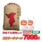 ミルキークイーン 米 お米 20kg 発送可能 送料無料 令和2年産