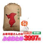 新米 令和2年 10kg 米 お米 ふさおとめ 白米 玄米 発送可能 送料無料