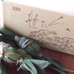 【送料無料・謙信笹だんご 20個入(冷凍)】越後新潟名物・米どころ新潟の美味しい人気のお土産品