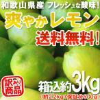 レモン 3kg(箱込約3kg)国産 訳あり・ご家庭用 / 檸檬 送料無料(東北・北海道・沖縄県除く)