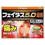 【第2類医薬品】久光製薬 フェイタス5.0 温感 大判サイズ 微香性 (14枚入)
