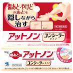 【第2類医薬品】小林製薬 アットノンt コンシーラータイプ (10g) 傷あとに 非ステロイド剤