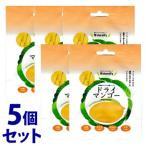 《セット販売》 北国生活社 Naturally ナチュラリー ドライマンゴー (50g)×5個セット 乾燥マンゴー ※軽減税率対象商品