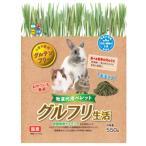 ハイペット グルフリ生活 牧草代用ペレット (550g) うさぎ・モルモット・チンチラ用フード エサ