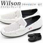 ショッピングデッキシューズ シューズ デッキ メンズ 靴 Wilson 8804 ウィルソン