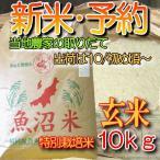 魚沼産コシヒカリ 新米 予約・玄米10k「特別栽培米29年度」産検査済一等米