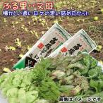 山菜セット 山菜天ぷら へぎそば  レシピ セット お買得 たっぷり3~4人前位 ご予約開始(発送は4/中旬〜)78001