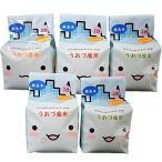 【精米】無洗米 JAうおづ産コシヒカリ ご当地キャラクターミラたんの「キューブ米」1.5kg (2合袋:300g×5個) 令和2年度産