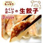 ふくいポーク生 餃子 10個入 |同梱用| ギフト 国産 冷凍