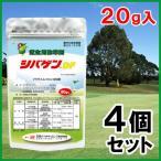 「芝生用除草剤 20g 4個セット」