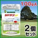 「芝生用除草剤 100g 2個セット」
