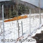「パネル型 金網フェンス 2000」メッシュフェンス 簡易柵