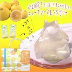 ニューサマーオレンジゼリー5個入 フルーツゼリー ギフト 詰め合わせ  条件付き送料無料