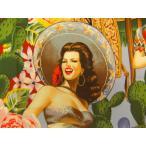 生地 布 輸入 USAコットン Las Señoritas セニョリータ 6542A メキシコ女性 THE ALEXANDER HENRY FABRICS アレキサンダーヘンリー ファブ