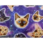 USAコットン 生地 布 ギャラクシーキャッツ C5393Galaxy 入園入学 銀河のネコ 猫 ねこ タイムレストレジャーズ 宇宙柄 Galaxy Cats 商用利用可能