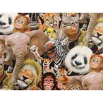 USAコットン 生地 布 ズーセルフィーズ 1316multi エリザベススタジオ Zoo Selfies 自撮り動物園 ライオン ゾウ パンダ キリン シマウマ サイ オ