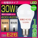 LED電球 E26 低圧 30W相当 低電圧AC/DC 12V-24V 5W 昼光色 電球色 一般電球形 船舶用 節電対策 船の作業灯 LED航海灯 低発熱 長寿命の画像