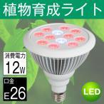 LED電球 植物育成 サンプランター 水耕栽培ランプ 室内用 口金E26 12W LED 植物育成用ランプ プラントライト 園芸