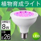 植物育成ランプ LED電球  Par30 サンプランター 水耕栽培ランプ 室内用 口金E26 8W LED 植物育成用ランプ プラントライト 園芸ビーム球型