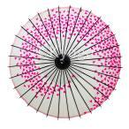 和傘 紙傘 こども用和傘 桜渦 白地ピンク 一本柄 舞踊傘 踊り傘