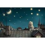 Queenie 1000ピース 可愛いペルシャ猫 星空 星 月 静かな夜景 絵画 子供 教育学習玩具 木製知育ジグソーパズル