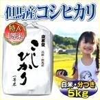 29年産 当日精米 兵庫県但馬産 こしひかり 5kg 特A 一等米 白米・分搗き  (有機質肥料使用)