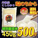 丹後産 コシヒカリ 環(わ)のちから (特別栽培米)白米 3合(450g)送料無料 メール便対応