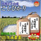 お米 10kg コシヒカリ 玄米 5kg×2 特別栽培米 7.5割農薬減 兵庫県 丹波篠山産 特A 一等米 送料無料 令和2年産 タイムセール 安い