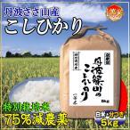 29年産 7.5割農薬減 コシヒカリ 5kg 兵庫県 丹波ささやま産 検査一等米 白米 分づき可 当日精米