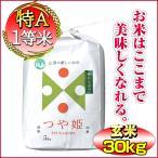 28年つや姫 山形県庄内産 玄米 30kg (10kg×3袋) 送料無料 特別栽培米 一等米 特A