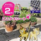 猫よけ・ここダメシート 2m巻きシートマット(1枚入り)