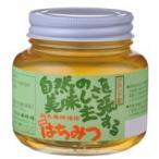 【送料無料】鈴木養蜂場 はちみつ アカシア(AK) 450g 2個セット