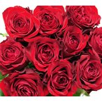あこがれの赤薔薇 欲しい数だけ花束 サムライ マダム アマダ