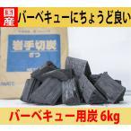 岩手県産 バーベキュー用木炭 6kg入り