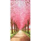 のれん 桜並木道 85×170cm ポリエステル100% 日本製 新品