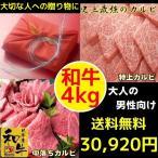 焼肉 焼き肉 焼肉セット (BBQ バーべキュー) 肉 国産 和牛 4kg (BBQ バーべキュー) 焼肉