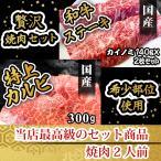 里脊肉 - ステーキ 国産 和牛 カイノミ 140g×2枚 ステーキ肉