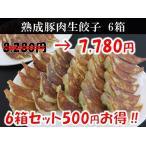マルシン熟成豚肉生餃子 6箱セット