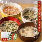 JA柳川 おいしい野菜たっぷりスープ・味噌汁 お試し8個セット 1000円ポッキリ ニラ玉スープ な...
