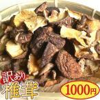 Kyushu sanchoku ksb10000129