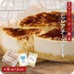 Kyushu sanchoku rps10000617