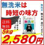 【OPEN記念価格】熊本県産 無洗米 森のくまさん 5kg 令和元年産